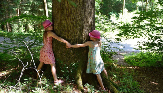 tree-hugging-1